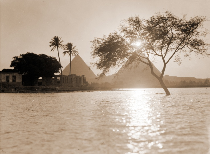 Dreaming in American Twilight Giza-Nile